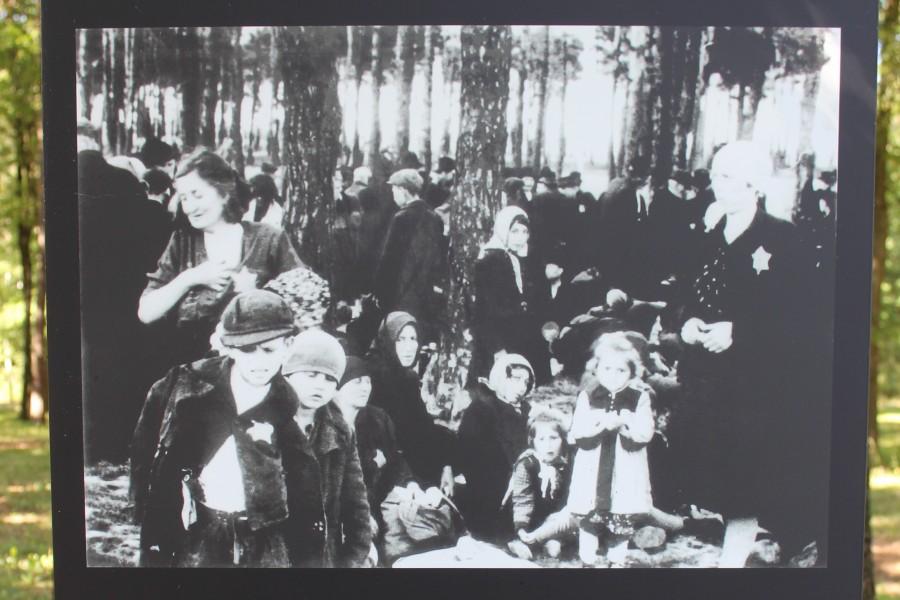 Displays of prisoners' photographs at the Auschwitz-Birkenau Memorial Site