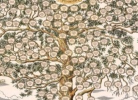 Семинар «История моей семьи»
