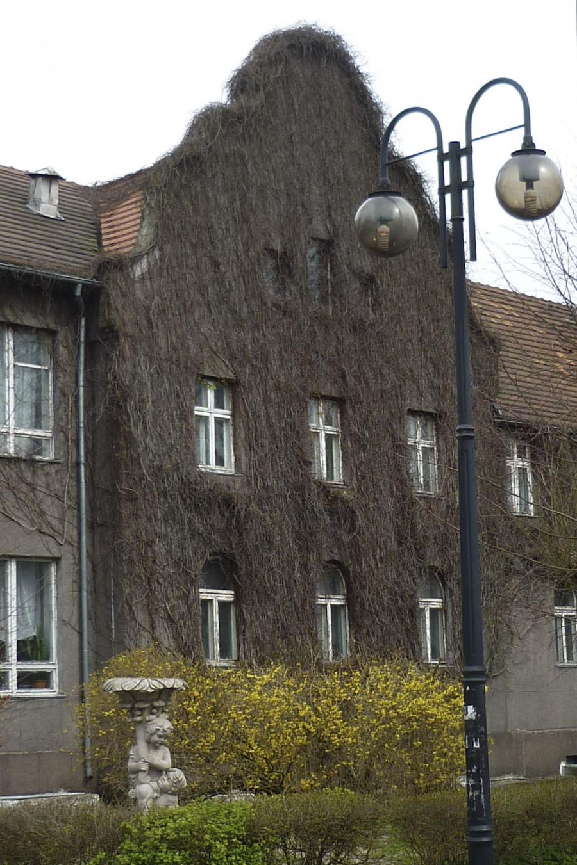 Раушен (Светлогорск), здание водолечебницы