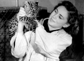 «Зоопарк – территория любви»*