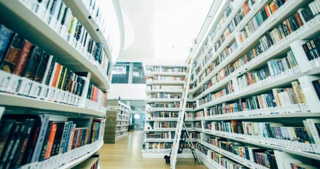 Развитие программ инклюзивного образования обсудили в СФИ